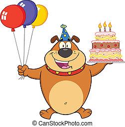compleanno, bulldog, marrone