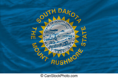 complete flag of us state of south dakota covers whole...