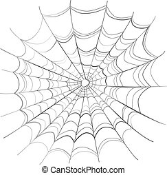 Complicated scary spider web isolated on white