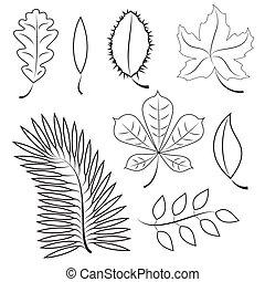 complot, diferente, leaves., contorno