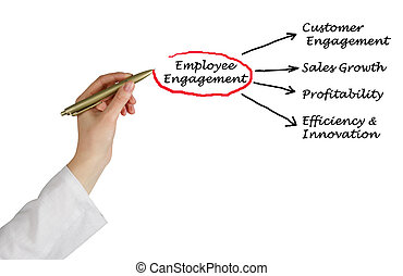 Components of Employee Engagement