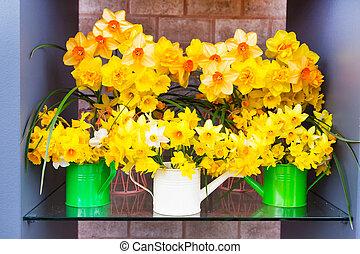 composição, de, primavera, amarela, narcisos silvestres, em, água, latas