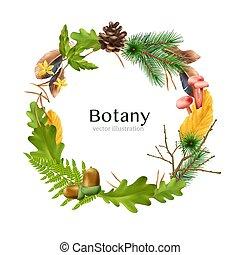 composición, guirnalda, marco, botánico