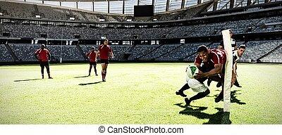 composite, chaque, rugby, deux, stade, numérique, empoigner...