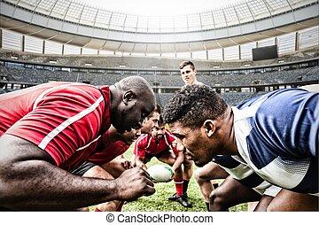 composite, chaque, rugby, stade, image numérique, équipe, ...