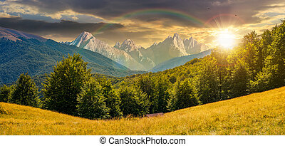 composite summer landscape in mountains at sunset -...
