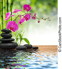 composition bamboo-purple orchid-black stones