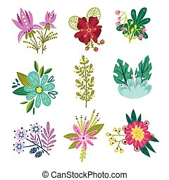 composition, blanc, vecteur, ensemble, fleurs, fantaisie, fond, isolé