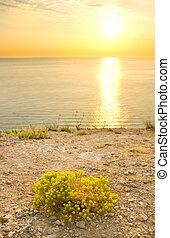 composition., coucher soleil