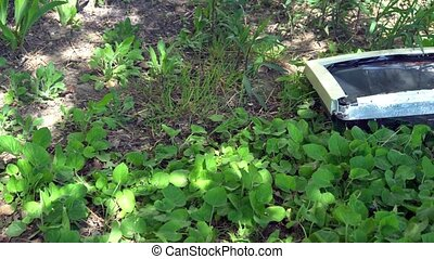 Composition of a broken computer on the grass