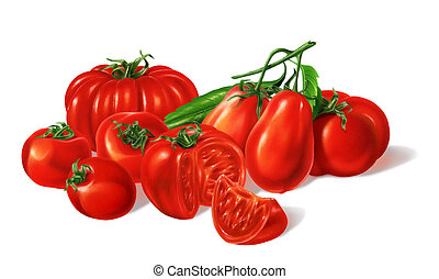 Composition of Different red Tomatoes types grouped. ...