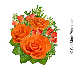 Composition of orange roses flowers. Isolated on white background