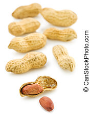composition of peanuts isolated