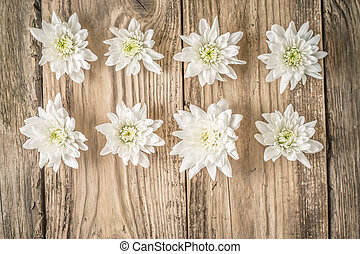 Composition of white flowers on the wooden background