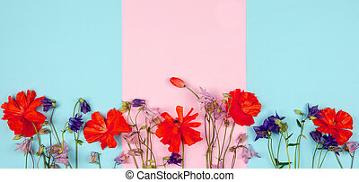 composition of wild flowers and red poppies on pink blue background close-up with copy space
