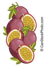 composition., passione, isolato, frutta, vettore