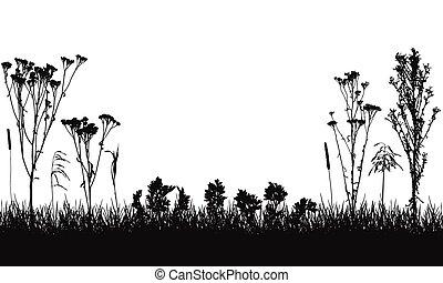 composition, sauvage, vecteur, herbe, illustration., usines, silhouette., mauvaises herbes, pré