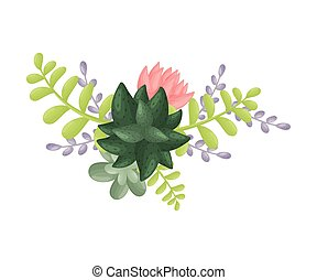 Composition with a dark green cactus in the center. View from above. Vector illustration on a white background.