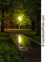 Composition with an empty alley and a lantern. Street lamp illuminates the trees and reflected in a puddle