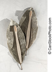 Composition with biodegradable bamboo toothbrushes. - ...