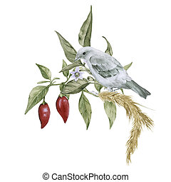 Composition with chili peppers and a bird on a branch. Isolated on a white background.