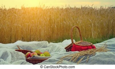 Composition with handmade wicker basket, apples and branch of wheat on cloth and placed in wheat field. 1920x1080