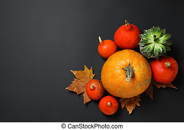 Composition with pumpkins, leaves and succulent on black background, copy space
