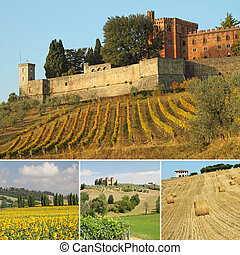 composition with spectacular tuscan landscape