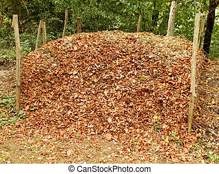 Compost Heap - Compost heap full of autumn leaves