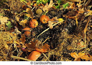 compost pile 15