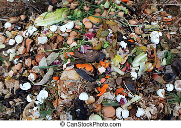A pile of degradable food scraps such as eggs shells, melon rinds, banana and orange peels and other food scraps that will decompose into soil