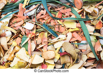 Composting the Kitchen Waste in a plastic compost bin