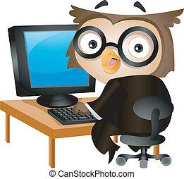 computador, coruja