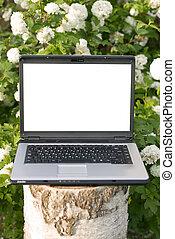 computadora de computadora portátil, en, naturaleza
