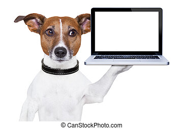 computer dog - dog holding a blank portable pc on paw