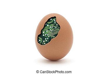 Computer egg