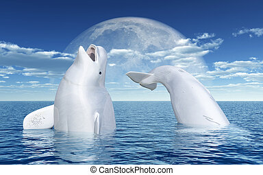 Beluga whales in front of the moon - Computer generated 3D...