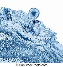 Liquid Splash - Blue - Computer generated image - Liquid...