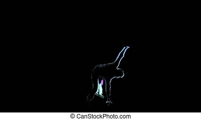 Computer graphics, silhouette perform brakedance in slow...