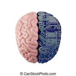 Computer human brain isolated on white with clipping path