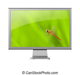 computer monitor LCD with beautiful wallpaper on white...