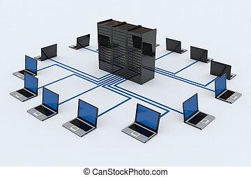 computer netværk, hos, server