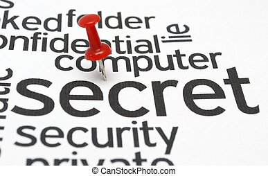 Computer secret security