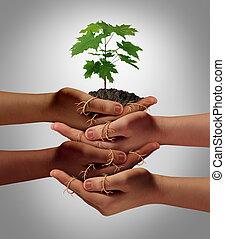 comunidad, cooperación