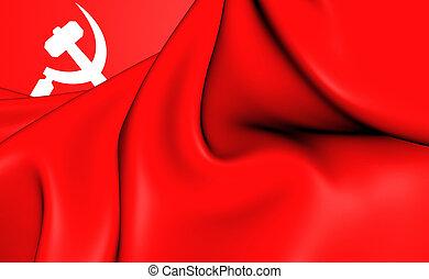 comunista, asiático, sur, bandera