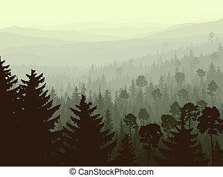 conífero, fog., madera, mañana