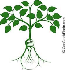 conceito, árvore, idéia