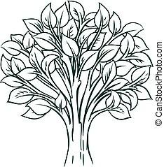 conceito, árvore