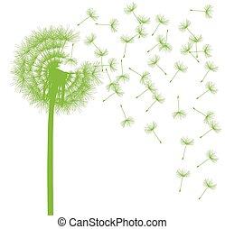 conceito, dandelion, afastado, soprando, sementes, ecologia,...