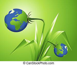 conceito, ecologia